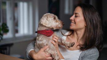 migliore assicurazione cane