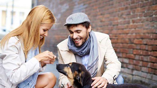 assicurazione cane unipol